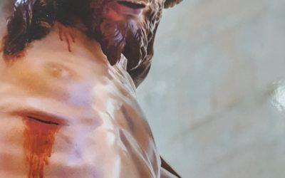 Libros: En carne viva, de Fermín María