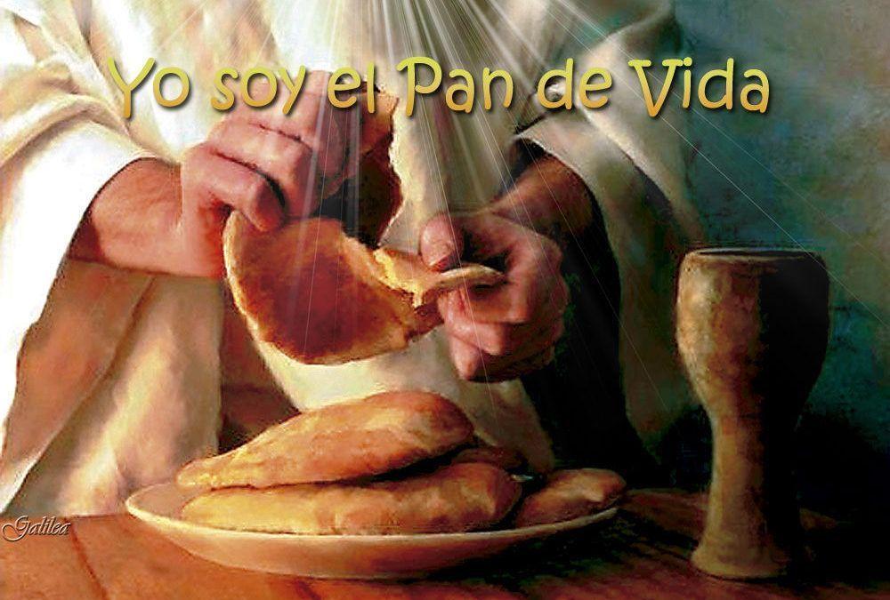 Domingo XX (B): El que come mi carne habita en mí y yo en él.