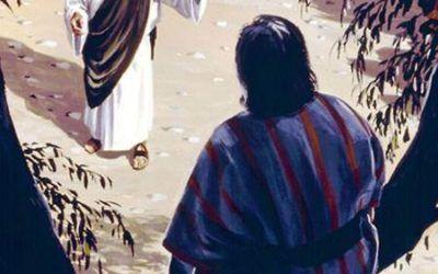 Domingo XXXI. Jesús y Zaqueo.