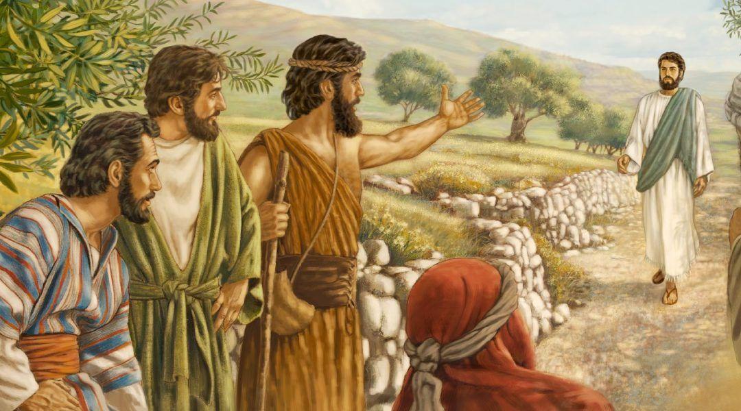 II Domingo T.O. Es el Hijo de Dios