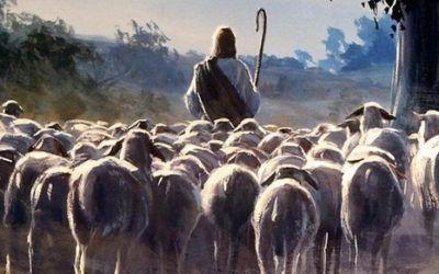 IV de Pascua. Jesús es el camino, la verdad y la vida
