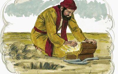Domingo XVII. El tesoro escondido