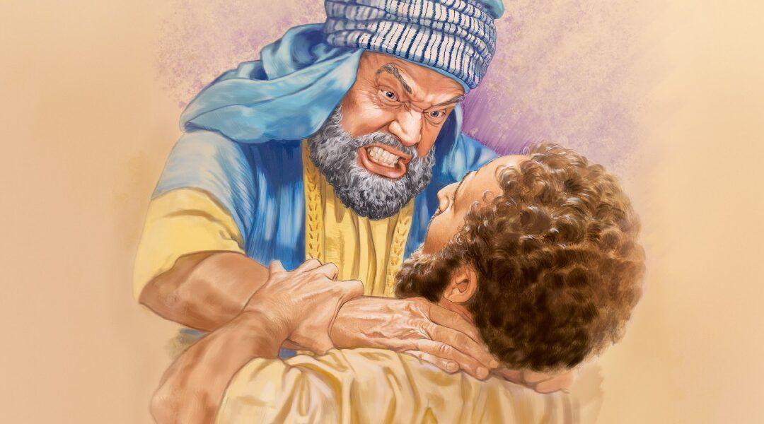 Domingo XIV T.O. Compasión