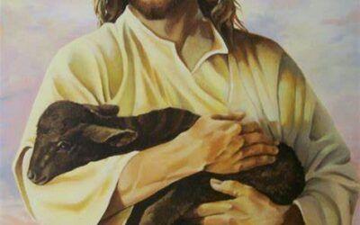 IV Domingo de Pascua: El buen pastor