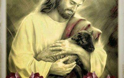 IV de Pascua: Jesús el buen pastor