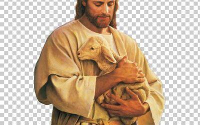 IV de Pascua. Oraciones de la Misa